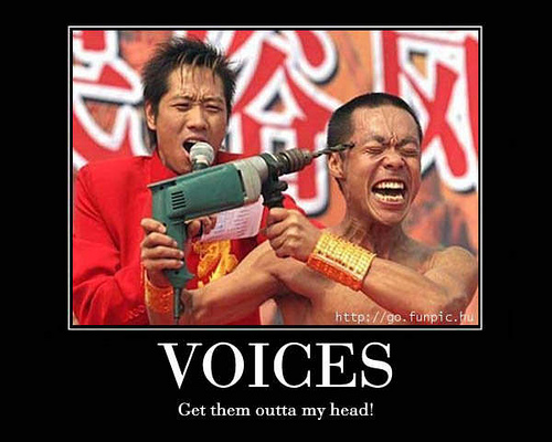 Voices In My Head Funny Caption Picture