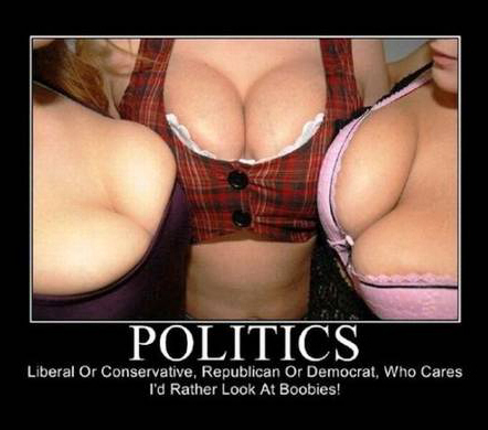 Politics demotivational poster