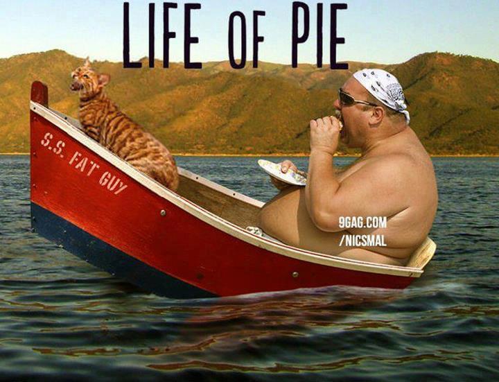 Life of pie film