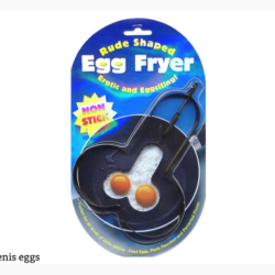 Novelty egg fryer